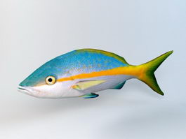 Animated Yellow Snapper Fish Rig 3d model