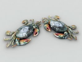 Green Crab 3d preview