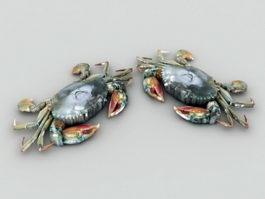 Green Crab 3d model