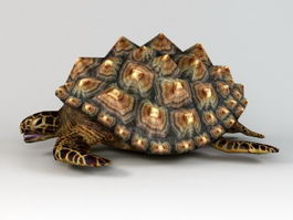 Yellow and Black Turtle 3d model