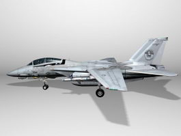 Grumman F-14 Tomcat Fighter 3d model