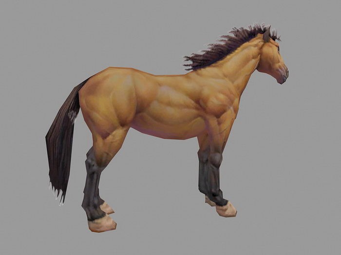 Beautiful Brown Horse 3d rendering