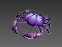 Animated Crab Rig 3d model