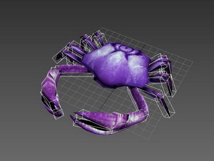 Animated Crab Rig 3d rendering