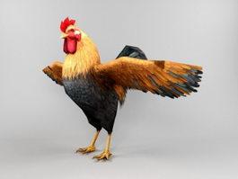 Farm Rooster 3d model