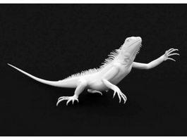 White Lizard 3d model