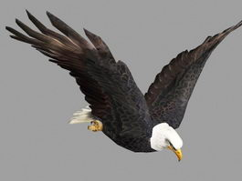 Flying Eagle Rig 3d model