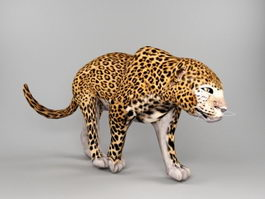Jaguar Animal 3d preview
