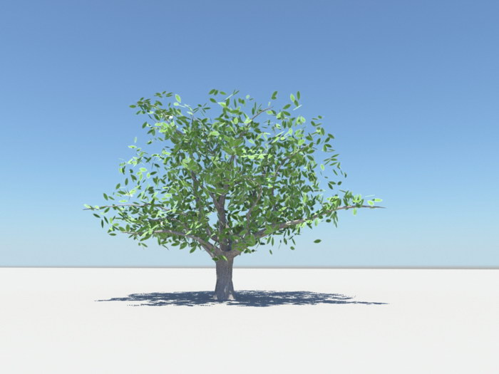 Summer Tree 3d rendering