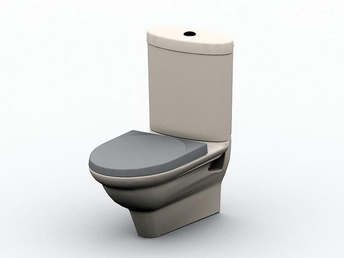 Flush Toilet Bowl 3d rendering