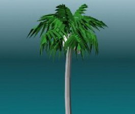 Cocoanut trees 3d model preview
