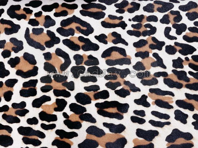 Leopard-print texture
