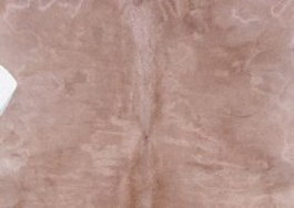 Buck leather texture