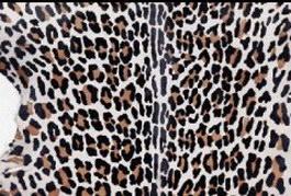 Raw leopard skin texture
