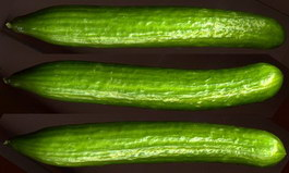 Cucumber texture