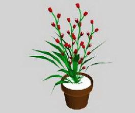 Indoor Plants Flowers 3d model preview