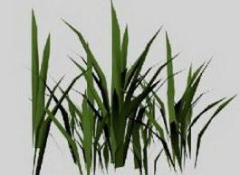 Bamboo Grass 3d preview