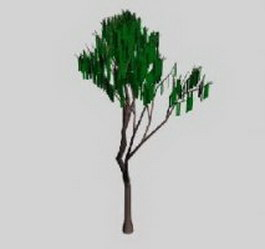 Tree 3d model preview