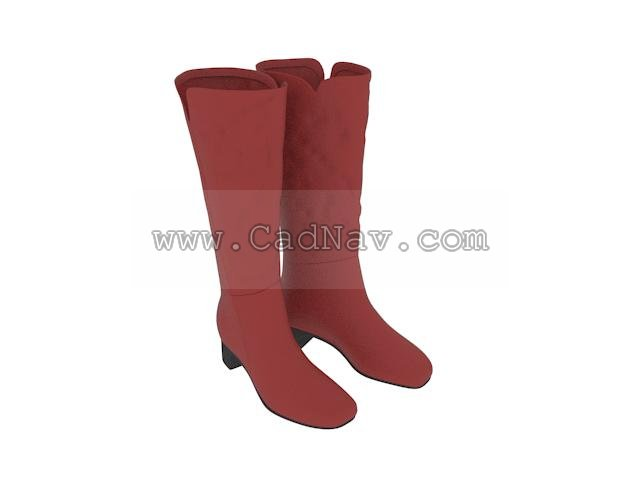 Ladies knee boots 3d rendering