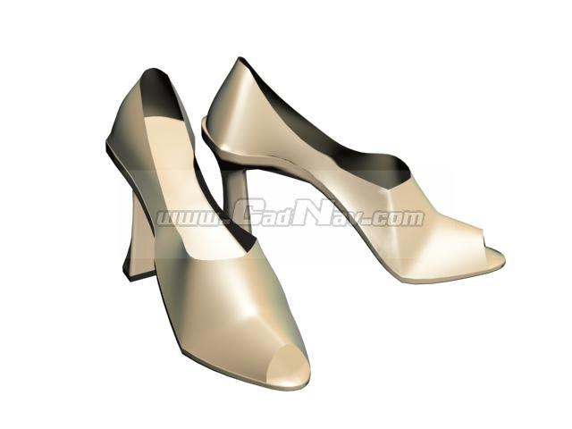 Women High-heeled dress shoe 3d rendering