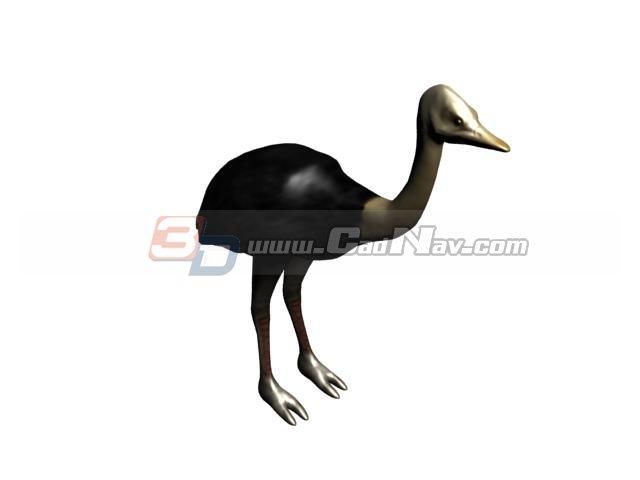 North Africa ostrich 3d rendering
