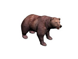 Indian Sloth Bear 3d preview