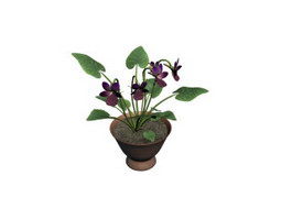 Ornamental flower bonsai 3d preview