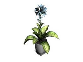 Rohdea japonica bonsai 3d model preview