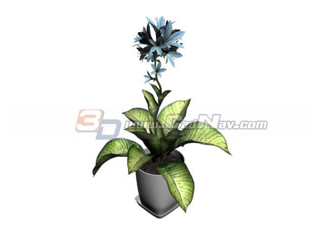 Rohdea japonica bonsai 3d rendering