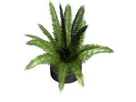 Mini coconut palm miniascape 3d preview
