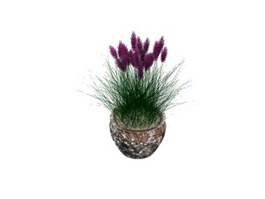 Home potted flower 3d preview