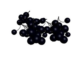 A bunch of grapes 3d preview