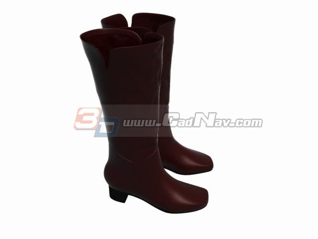 Knee Leather Women Boots 3d rendering