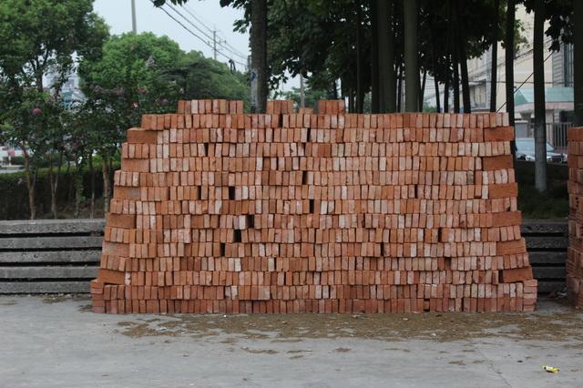 Clay Red Bricks texture