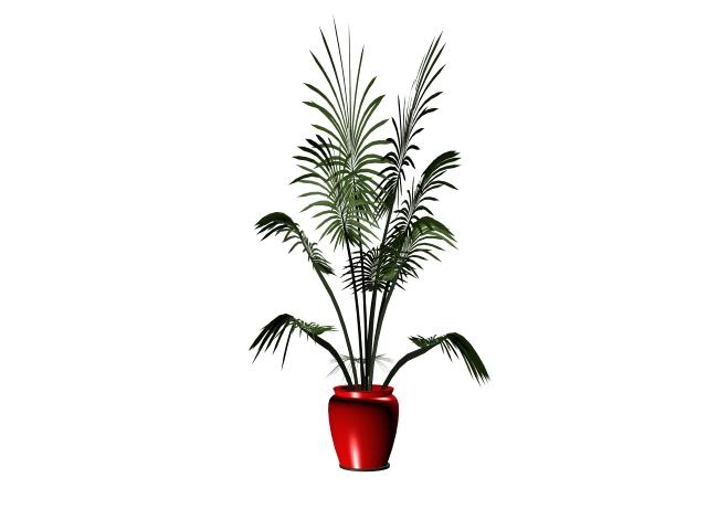 Potted plant bonsai 3d rendering