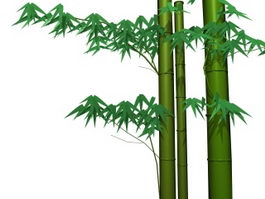 Bamboo and leaves 3d model preview