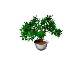 Potted landscape plant 3d preview