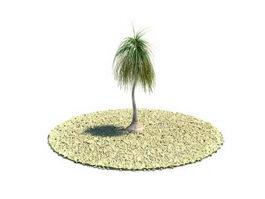 Nolina recurvata plant 3d model preview