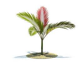 Chambeyronia macrocarpa tree 3d model preview