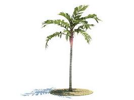 Areca vestiaria tree 3d preview