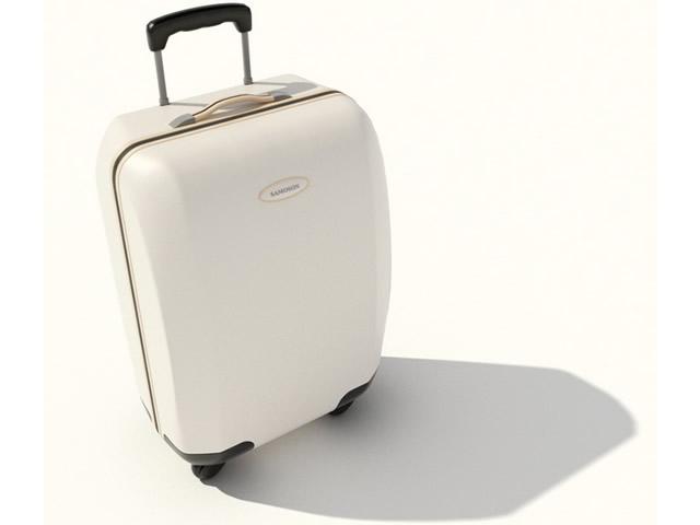Trolley bag luggage 3d rendering