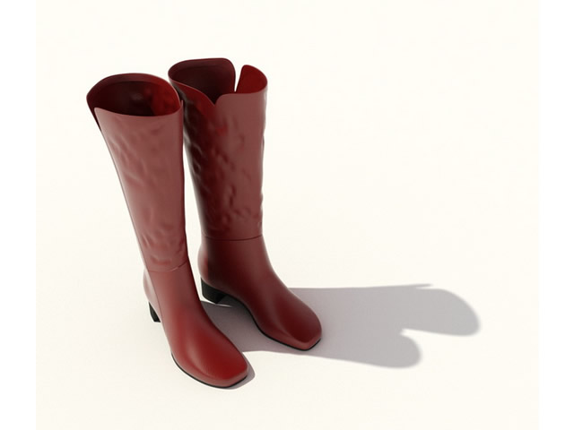 Lady kinky boots 3d rendering