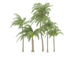 Coconut palm tree collection 3d model preview