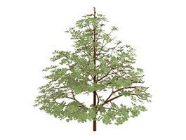 Styrax officinalis shrub 3d model preview