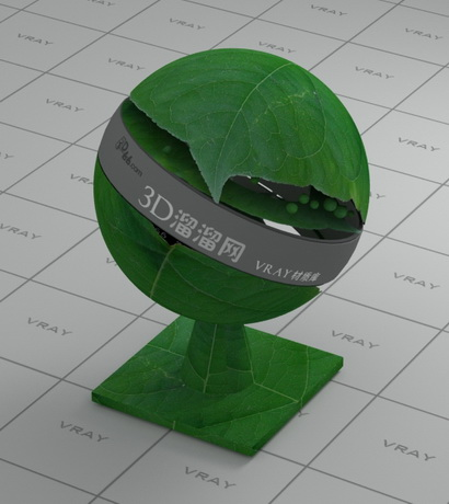 Realistic green leaf material rendering