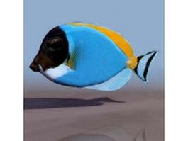 Tropical fish 3d model preview
