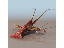 Clawed lobster 3d preview