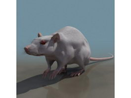 Laboratory mouse 3d preview