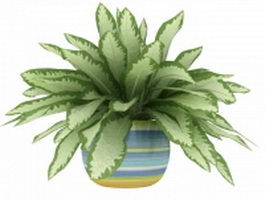 Potted sansevieria 3d model preview