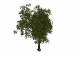 Goat willow tree 3d model preview